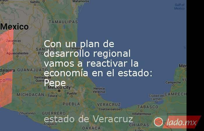 Con un plan de desarrollo regional vamos a reactivar la economía en el estado: Pepe. Noticias en tiempo real