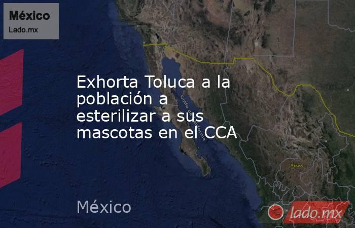 Exhorta Toluca a la población a esterilizar a sus mascotas en el CCA. Noticias en tiempo real