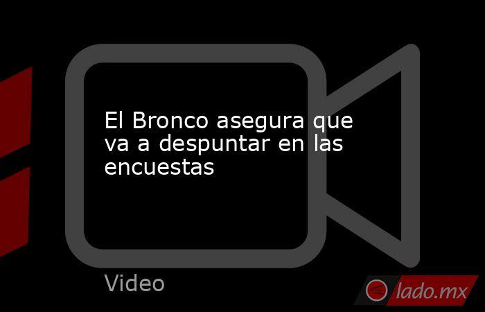 El Bronco asegura que va a despuntar en las encuestas. Noticias en tiempo real