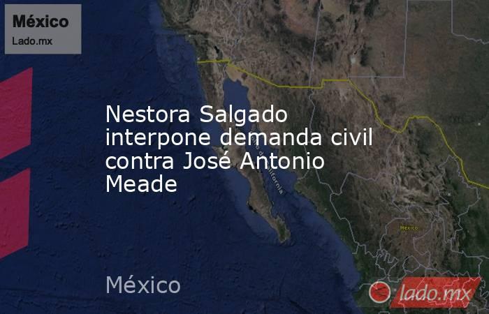 Nestora Salgado interpone demanda civil contra José Antonio Meade. Noticias en tiempo real