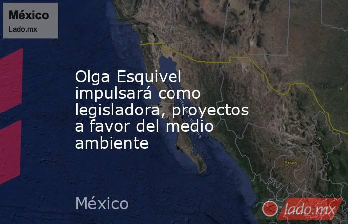 Olga Esquivel impulsará como legisladora, proyectos a favor del medio ambiente. Noticias en tiempo real