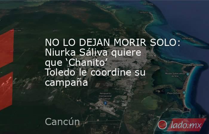 NO LO DEJAN MORIR SOLO: Niurka Sáliva quiere que 'Chanito' Toledo le coordine su campaña. Noticias en tiempo real