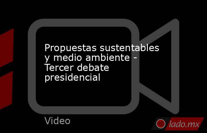 Propuestas sustentables y medio ambiente - Tercer debate presidencial. Noticias en tiempo real