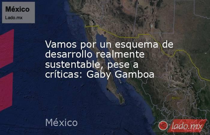 Vamos por un esquema de desarrollo realmente sustentable, pese a críticas: Gaby Gamboa. Noticias en tiempo real
