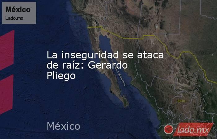 La inseguridad se ataca de raíz: Gerardo Pliego. Noticias en tiempo real