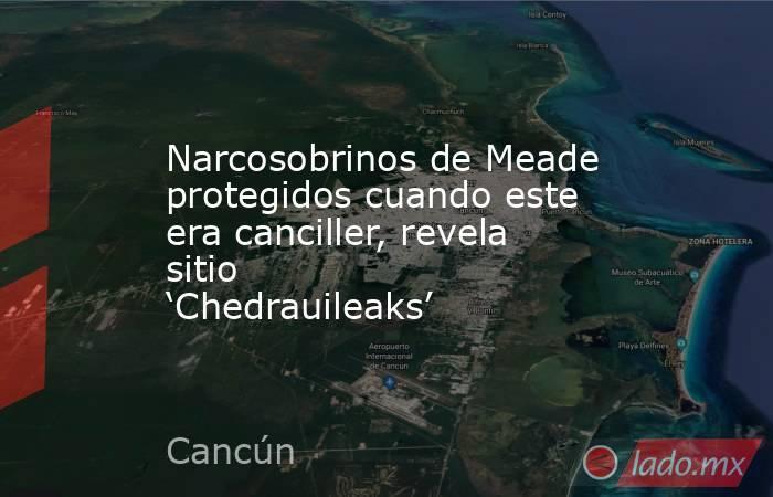 Narcosobrinos de Meade protegidos cuando este era canciller, revela sitio 'Chedrauileaks'. Noticias en tiempo real
