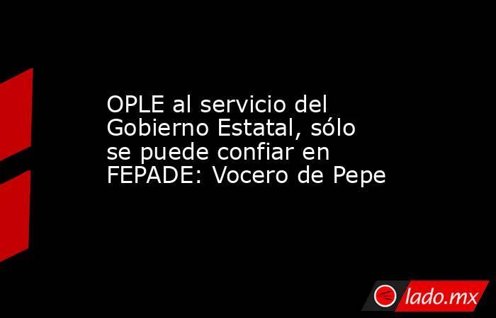 OPLE al servicio del Gobierno Estatal, sólo se puede confiar en FEPADE: Vocero de Pepe. Noticias en tiempo real
