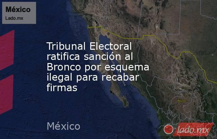 Tribunal Electoral ratifica sanción al Bronco por esquema ilegal para recabar firmas. Noticias en tiempo real