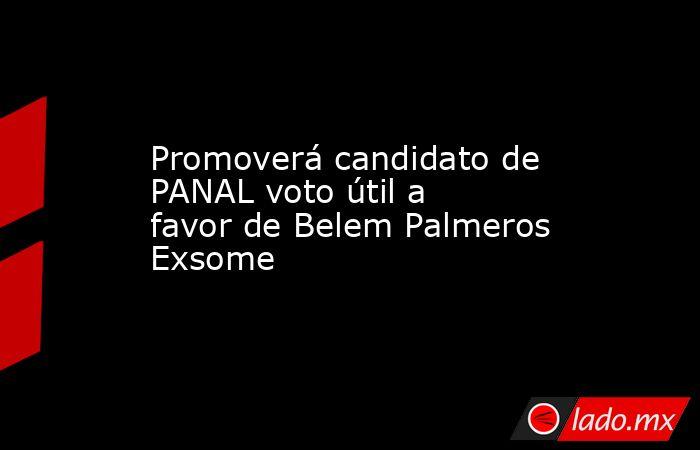 Promoverá candidato de PANAL voto útil a favor de Belem Palmeros Exsome. Noticias en tiempo real