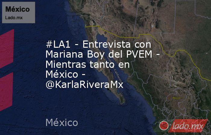 #LA1 - Entrevista con Mariana Boy del PVEM - Mientras tanto en México - @KarlaRiveraMx. Noticias en tiempo real
