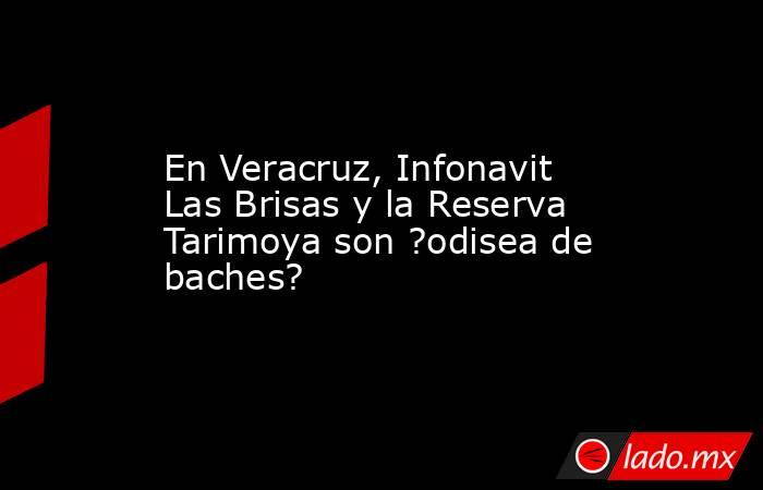 En Veracruz, Infonavit Las Brisas y la Reserva Tarimoya son ?odisea de baches?. Noticias en tiempo real
