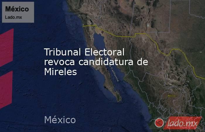 Tribunal Electoral revoca candidatura de Mireles. Noticias en tiempo real