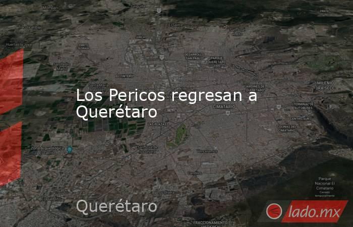Los Pericos regresan a Querétaro. Noticias en tiempo real