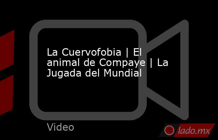 La Cuervofobia | El animal de Compaye | La Jugada del Mundial. Noticias en tiempo real