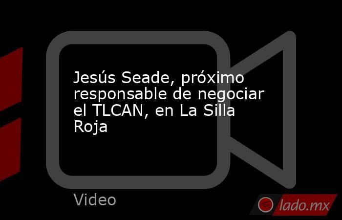 Jesús Seade, próximo responsable de negociar el TLCAN, en La Silla Roja. Noticias en tiempo real
