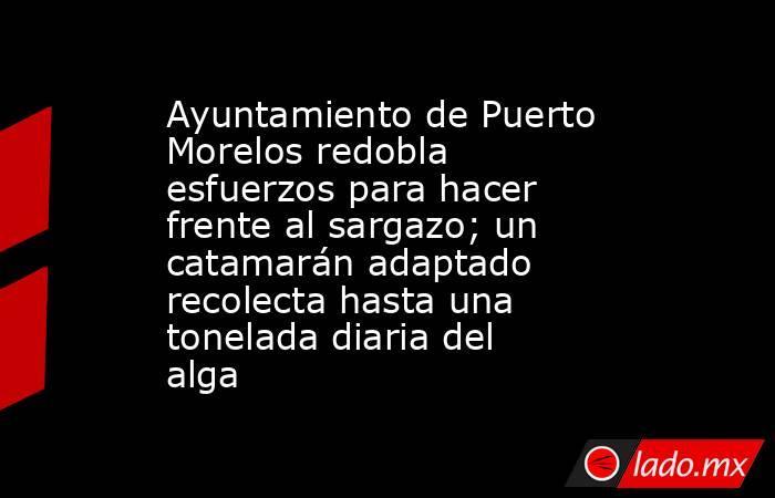 Ayuntamiento de Puerto Morelos redobla esfuerzos para hacer frente al sargazo; un catamarán adaptado recolecta hasta una tonelada diaria del alga. Noticias en tiempo real