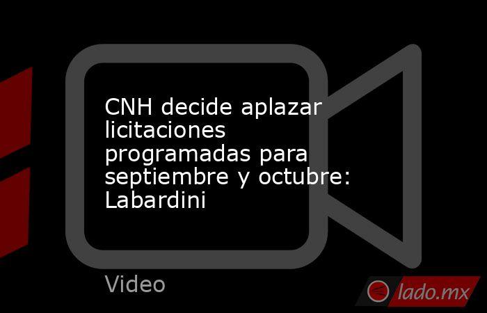 CNH decide aplazar licitaciones programadas para septiembre y octubre: Labardini. Noticias en tiempo real