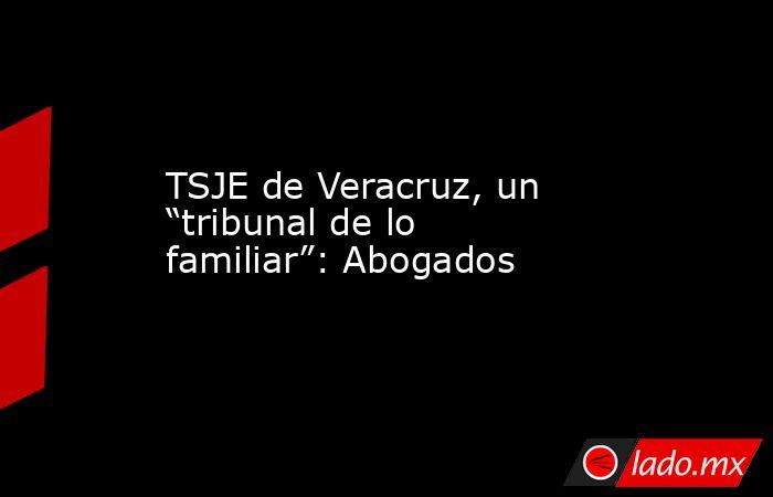 """TSJE de Veracruz, un """"tribunal de lo familiar"""": Abogados. Noticias en tiempo real"""