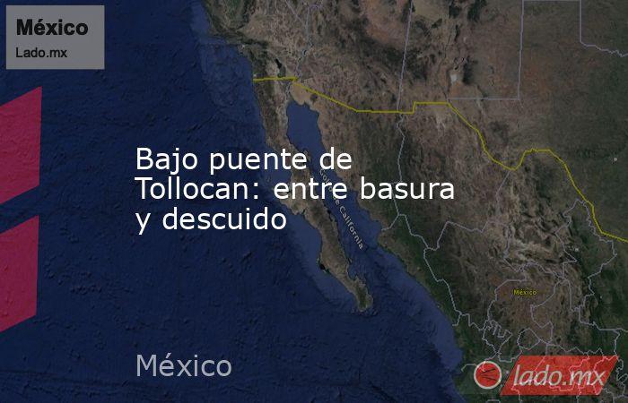Bajo puente de Tollocan: entre basura y descuido. Noticias en tiempo real