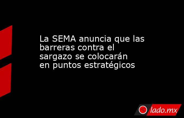 La SEMA anuncia que las barreras contra el sargazo se colocarán en puntos estratégicos. Noticias en tiempo real