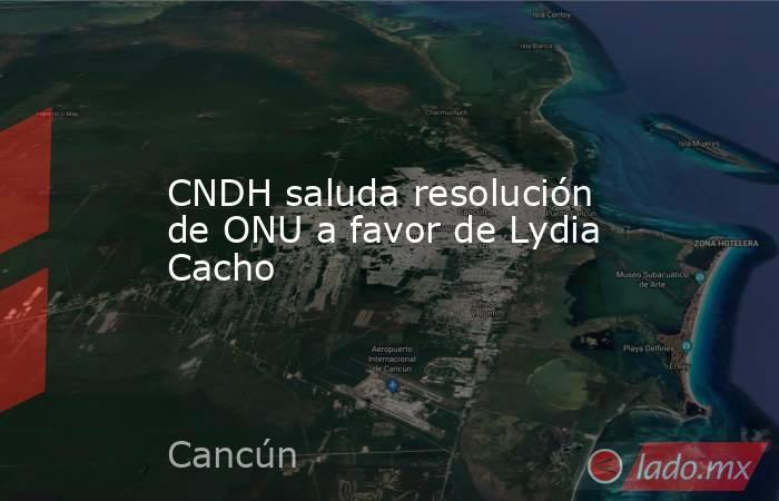 CNDH saluda resolución de ONU a favor de Lydia Cacho. Noticias en tiempo real