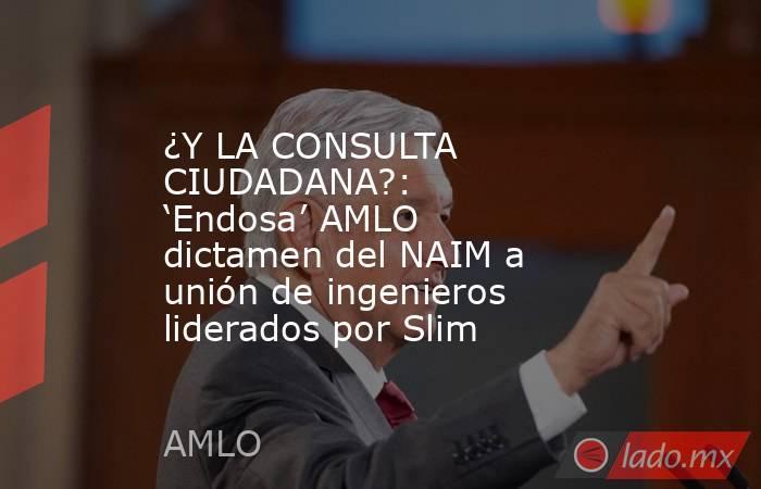 ¿Y LA CONSULTA CIUDADANA?: 'Endosa' AMLO dictamen del NAIM a unión de ingenieros liderados por Slim. Noticias en tiempo real
