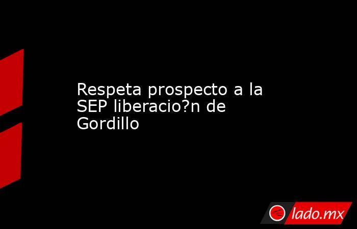 Respeta prospecto a la SEP liberacio?n de Gordillo. Noticias en tiempo real
