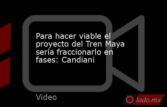 Para hacer viable el proyecto del Tren Maya sería fraccionarlo en fases: Candiani. Noticias en tiempo real