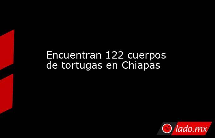 Encuentran 122 cuerpos de tortugas en Chiapas. Noticias en tiempo real