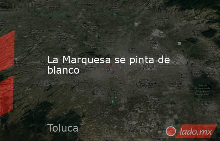 La Marquesa se pinta de blanco. Noticias en tiempo real