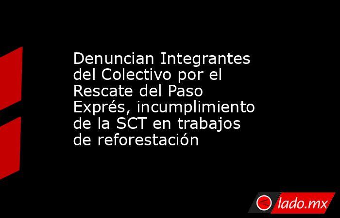Denuncian Integrantes del Colectivo por el Rescate del Paso Exprés, incumplimiento de la SCT en trabajos de reforestación. Noticias en tiempo real