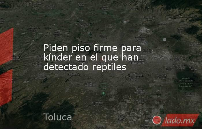 Piden piso firme para kínder en el que han detectado reptiles. Noticias en tiempo real