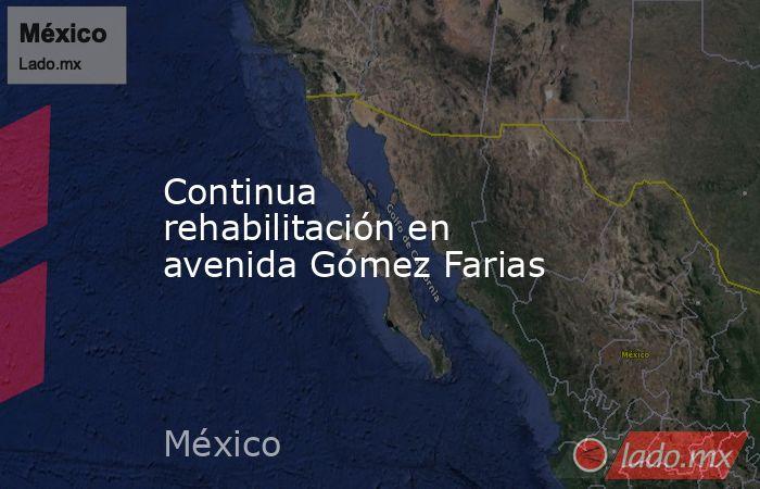 Continua rehabilitación en avenida Gómez Farias. Noticias en tiempo real