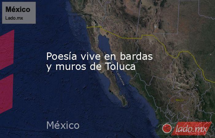 Poesía vive en bardas y muros de Toluca. Noticias en tiempo real
