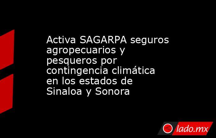 Activa SAGARPA seguros agropecuarios y pesqueros por contingencia climática en los estados de Sinaloa y Sonora. Noticias en tiempo real