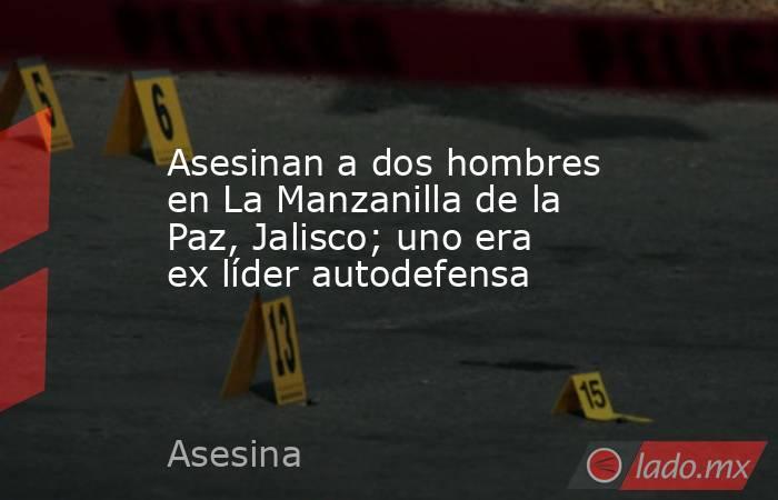 Asesinan a dos hombres en La Manzanilla de la Paz, Jalisco; uno era ex líder autodefensa. Noticias en tiempo real
