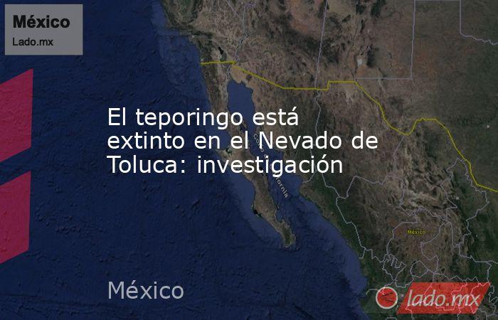 El teporingo está extinto en el Nevado de Toluca: investigación. Noticias en tiempo real
