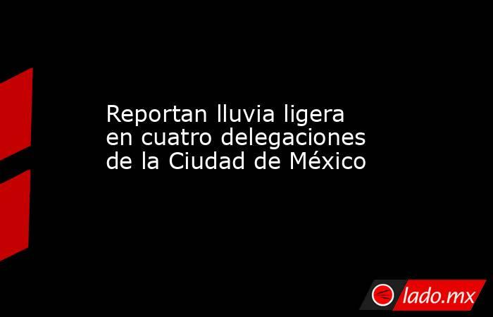 Reportan lluvia ligera en cuatro delegaciones de la Ciudad de México. Noticias en tiempo real