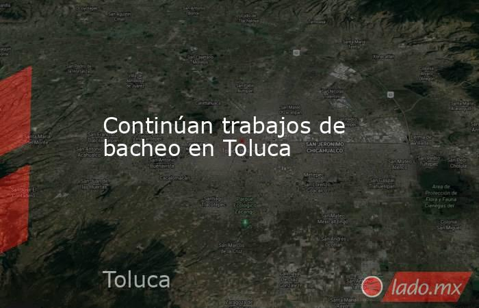 Continúan trabajos de bacheo en Toluca. Noticias en tiempo real