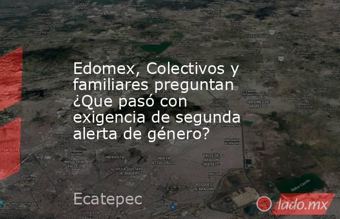 Edomex, Colectivos y familiares preguntan ¿Que pasó con exigencia de segunda alerta de género?. Noticias en tiempo real