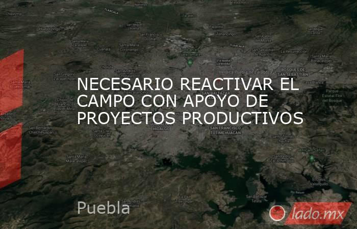 NECESARIO REACTIVAR EL CAMPO CON APOYO DE PROYECTOS PRODUCTIVOS. Noticias en tiempo real