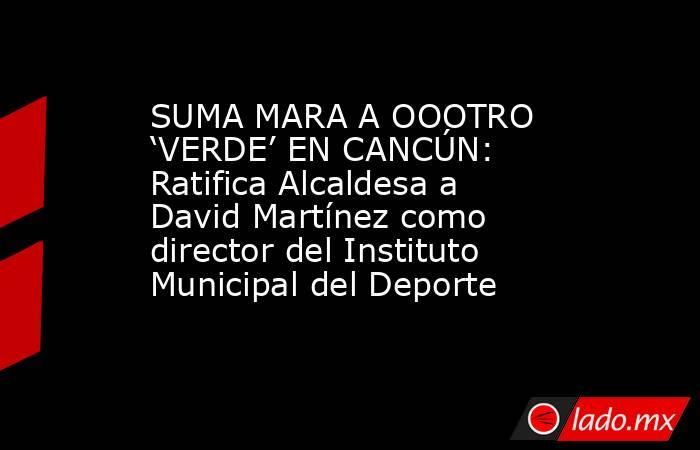 SUMA MARA A OOOTRO 'VERDE' EN CANCÚN: Ratifica Alcaldesa a David Martínez como director del Instituto Municipal del Deporte. Noticias en tiempo real