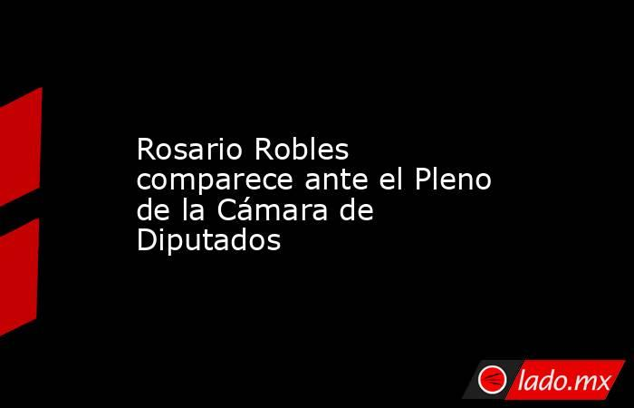 Rosario Robles comparece ante el Pleno de la Cámara de Diputados. Noticias en tiempo real