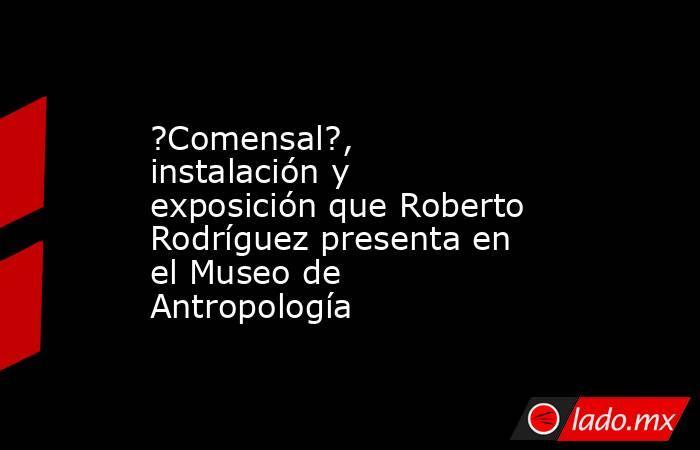 ?Comensal?, instalación y exposición que Roberto Rodríguez presenta en el Museo de Antropología. Noticias en tiempo real