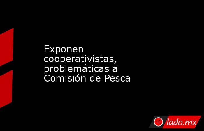 Exponen cooperativistas, problemáticas a Comisión de Pesca. Noticias en tiempo real