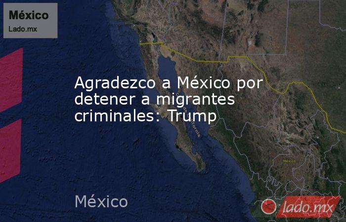 Agradezco a México por detener a migrantes criminales: Trump. Noticias en tiempo real