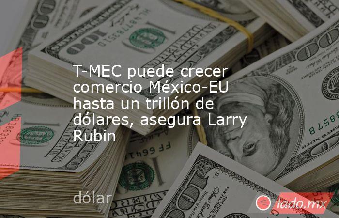 T-MEC puede crecer comercio México-EU hasta un trillón de dólares, asegura Larry Rubin. Noticias en tiempo real