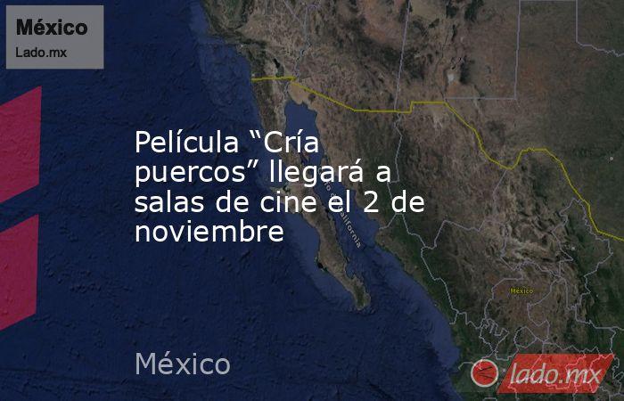 """Película """"Cría puercos"""" llegará a salas de cine el 2 de noviembre. Noticias en tiempo real"""