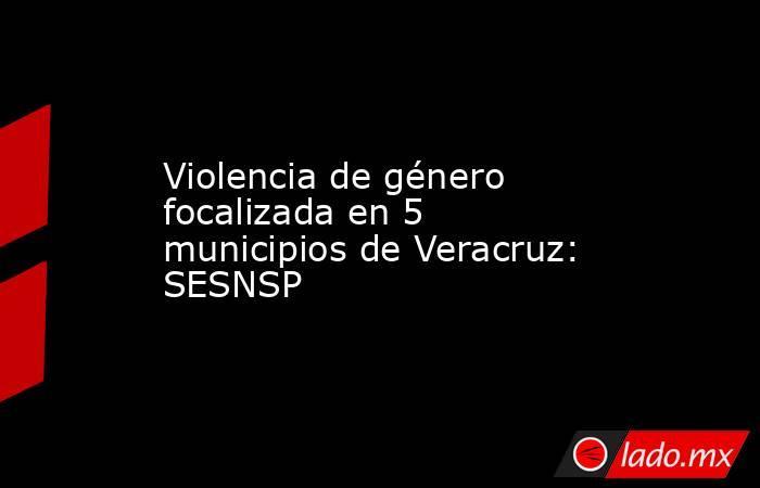 Violencia de género focalizada en 5 municipios de Veracruz: SESNSP. Noticias en tiempo real
