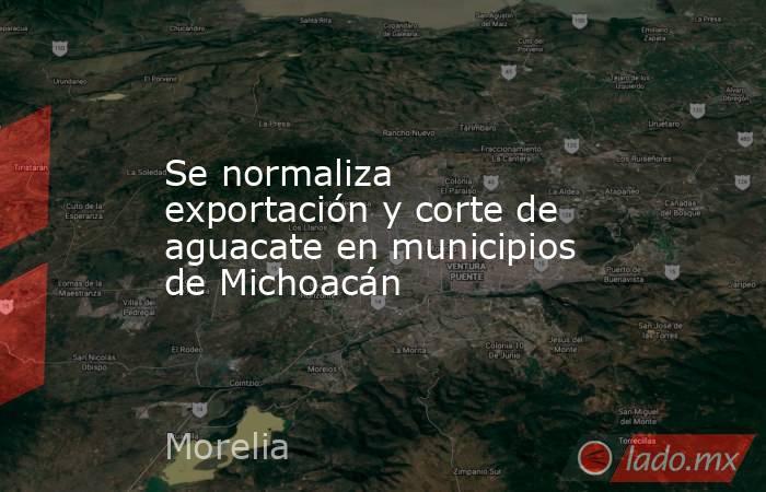 Se normaliza exportación y corte de aguacate en municipios de Michoacán. Noticias en tiempo real